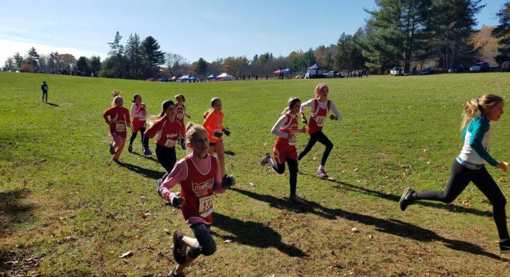 Strider Kids Running